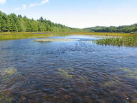 (1) Small river pond - Mushamush River - Nova Scotia